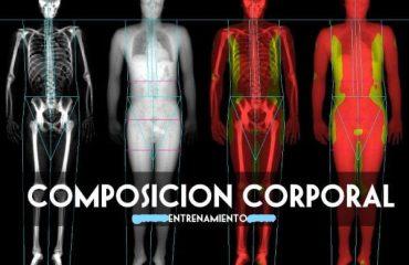 composición corporal en el fútbol